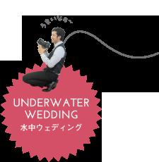 水中ウェディング